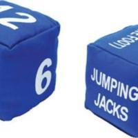 Fitness dice (pair)